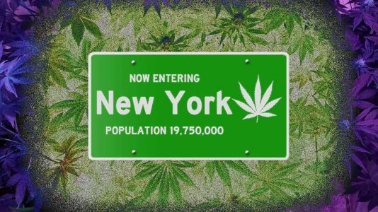 The MRTA and You: 10 Questions  about  New York's Marijuana Legalization Bill